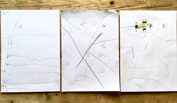 Bird mapping drawings