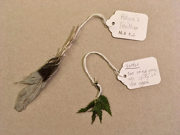 Feather and nettle