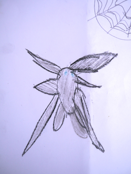 Drawing of a fly walking to a spider web by Iriyana