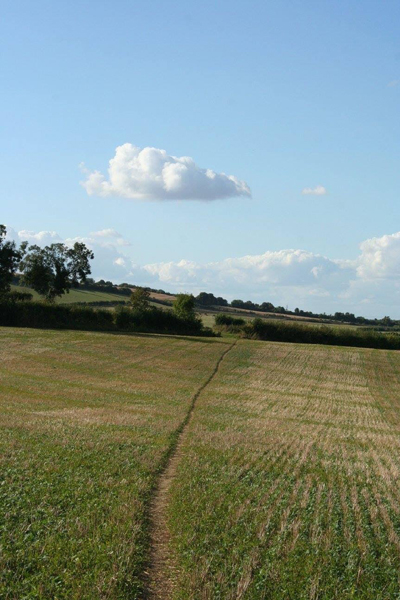 View of a footpath over fields with blue sky