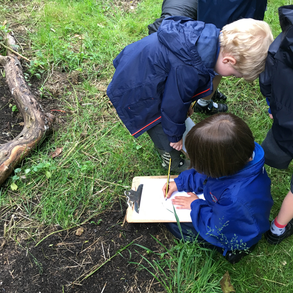 Sharp-eyed surveyors in Wrens class finding abundant evidence of animal occupation