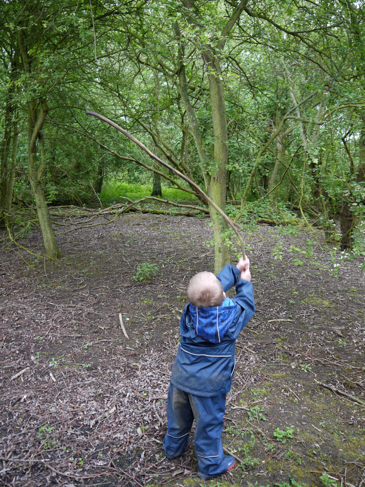 Callum �as tall as the trees�