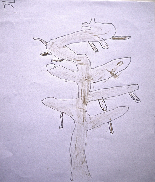 Tree by James